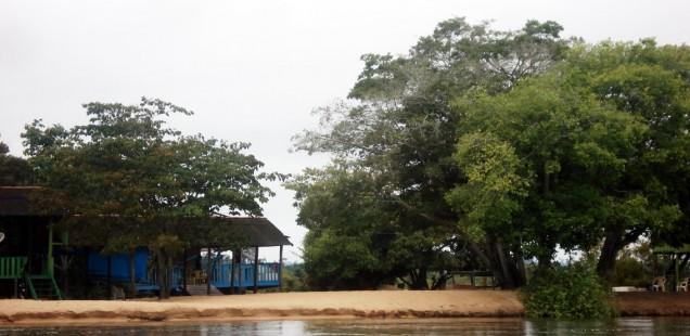 Amazônia Urgente II – Vídeos