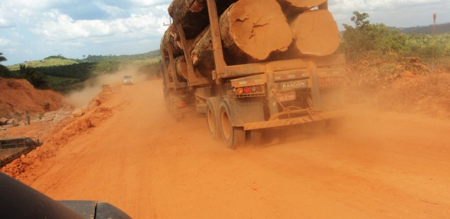 """Vídeos da campanha """"Amazônia Urgente!"""""""